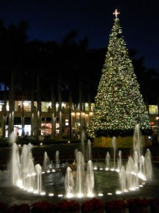 Coral Gables Real Estate Photos -- Fountain at Merrick Park (11) -- Christmas Tree