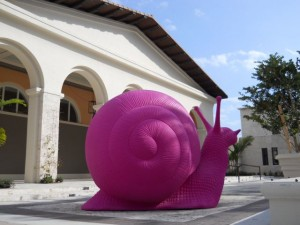 Coral Gables Real Estate Photos -- Pink Snails