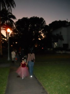 Coral Gables Real Estate Photos -- Halloween 2012 (1)
